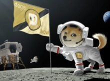 Should You Invest in Dogecoin